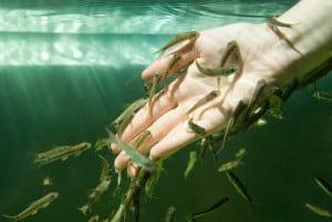 риби псориазис